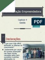 03 - Administração Empreendedora