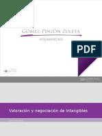 valoración_de_intangibles