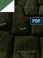 008 Muros Incas