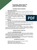 Caiet de Sarcini - Continut Document a Tie AnteEXEC Cerectare in Situ