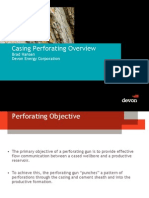 Casing Perforated Overview