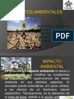 IMPACTOS AMBIENTALES1