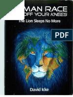 David Icke - Human Race Get Off Your Knees