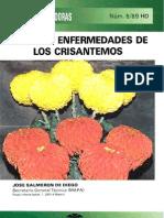 Plagas y Enfermedades Del Crisantemo