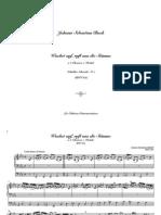 Bach_Choral_Wachet Auf, Ruft Uns Die Stimme BWV645