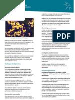 ActixOne Data Service Analysis