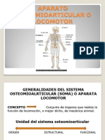 Aparato Osteomioarticular o Locomotor
