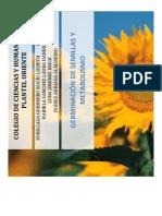germinaciondesemillasymetabolismo-091123202845-phpapp02
