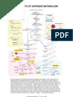 32 Products of Isoprene Metabolism