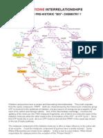 35 ATP - Histidine Interrelationships