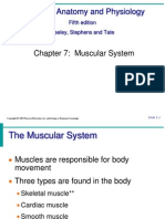 Ch7 Skeletal Muscles
