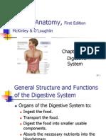 Ch26 Digestive System
