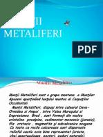 MUNTII METALIFERI