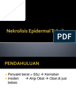 Nekrolisis Epidermal Toksik