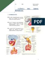 Anatomía clínica del árbol traquebronquial.