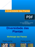 Diversidade Das Plantas[1]