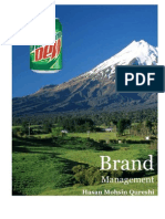 52497292 Strategic Brand Management Kevin Keller Mountain Dew Case Analysis
