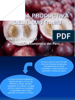 Cadena Productiva Del Camu Camu - Gino Marin Caro