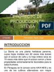 Proyecto de Produccion de Steviafinal