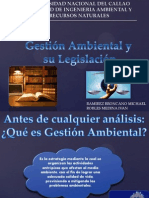 Gestion Ambiental VOficial