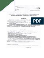 Formato Supervision Programas on Line