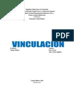 vinvulacion