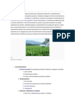 Agroindustria  documento