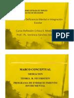 1° Marco conceptual Feuerstein 2012 VSS