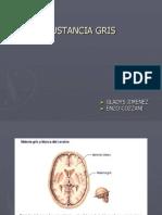 SUSTANCIA GRIS (1)