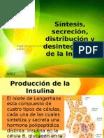 Síntesis, secreción, distribución y desintegración de