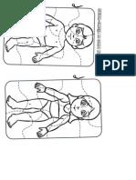 quebra cabeça corpo humano