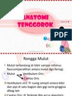 Anatomi Tenggorok