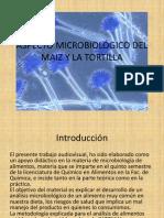 MICROBIOLOGÍA MAÍZ Y TORTILLA LALA