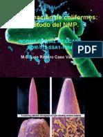 Determinación de coliformes
