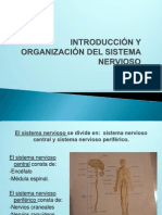 Diapositivas Mary