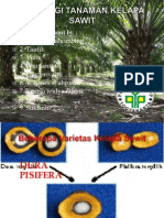 Fisiologi Tanaman Kelapa Sawit