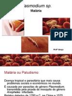 MALÁRIA Farmácia Profª Graça FAG 140909
