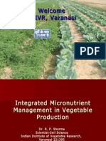 Vegetable Production Technology