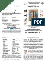 PROSPECTOCCA-SEMINARIO GRUPO IX