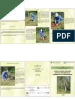 Como Plantar Arvores Nativas Em Area de Preservacao Permanente - Embrapa Sc