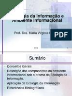 PO-13 - Ambiente Informacional