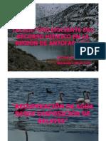 Recuperacion de Agua Desde Disposicion de Relaves Victor Conejeros