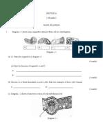 Pkpsm p. Pinang Paper 2