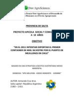 Proyecto Apicola Social y rio