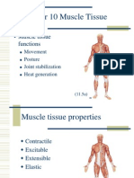 10 Muscle Tissue