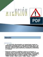 Clase 2atencion Percepcion y Memoria 110704170143 Phpapp02