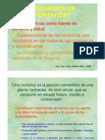 Produccion de Hortalizas en Uruguay.pdf