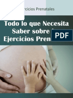Bonus 2 Ejercicios Prenatales