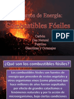 Combustibles Fosiles. Chelita