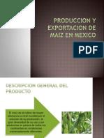 Produccion y Exportacion de Maiz en Mexico